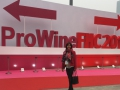 China November 2015, Prowein in Shanghai