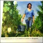 vinaria rotweinwunder 3 pixl